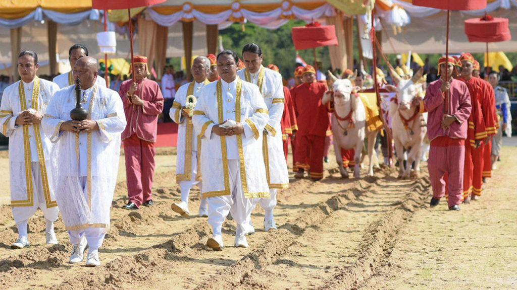 วันพืชมงคล ที่มาและความสำคัญต่อวิถีชีวิตของคนไทย