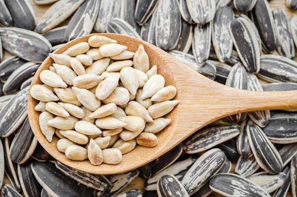 เมล็ดทานตะวัน นำมารับประทานแทนเนื้อสัตว์ได้ เพราะมีธาตุเหล็กสูงเทียบเท่ากับตับและไข่แดง