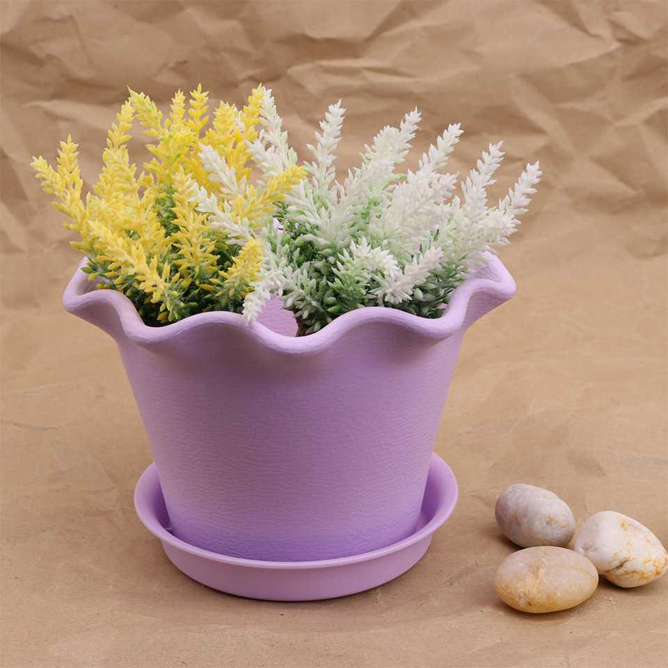 พันธุ์ไม้ดอกสามารถช่วยทำควาสะอาดอากาศได้
