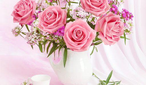 มาทำความรู้จักกับ ดอกกุหลาบ อันแสนสวยงามกันเถอะ