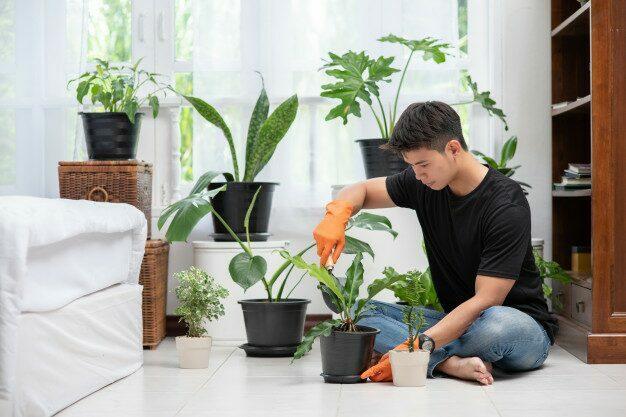 เหตุผลที่ปลูกต้นไม้แล้วตาย ที่ไม่กำจัดแมลงศัตรูพืช